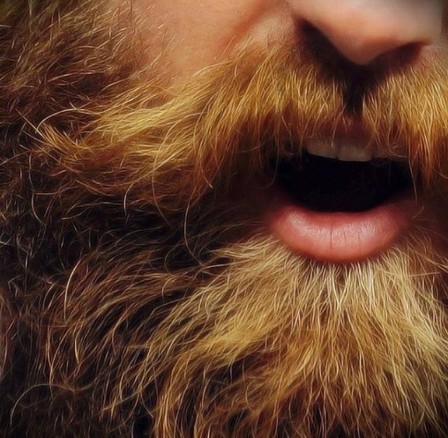 Art of the Beard itself