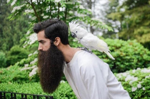 Beard of Burden